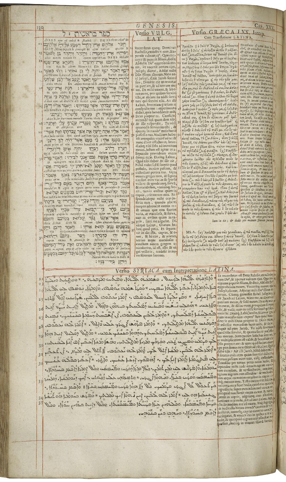 """An example of a """"polyglot"""" Bible---a Bible printed in its earliest languages and translations. On this leaf you can see texts in Hebrew, Latin, Greek, and Syriac, each in their own place and separated by hand-drawn red ruling."""