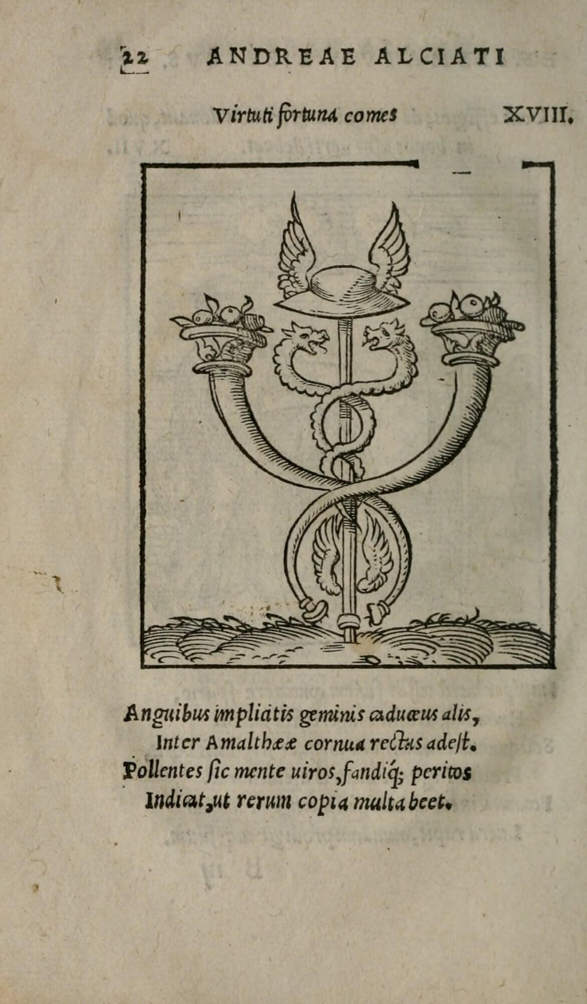 The border on this emblem woodblock is broken along the top edge, perhaps because the woodcut was damaged. This emblem served as the basis for the printer's device used in this book and passed down through the Wechel family.