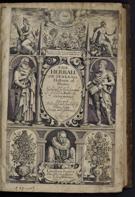 This engraved title page, with portraits not only of the author but of classical figures and with architectural structures providing an edifice tying the details together, strives to create an imposing authority for this herbal.