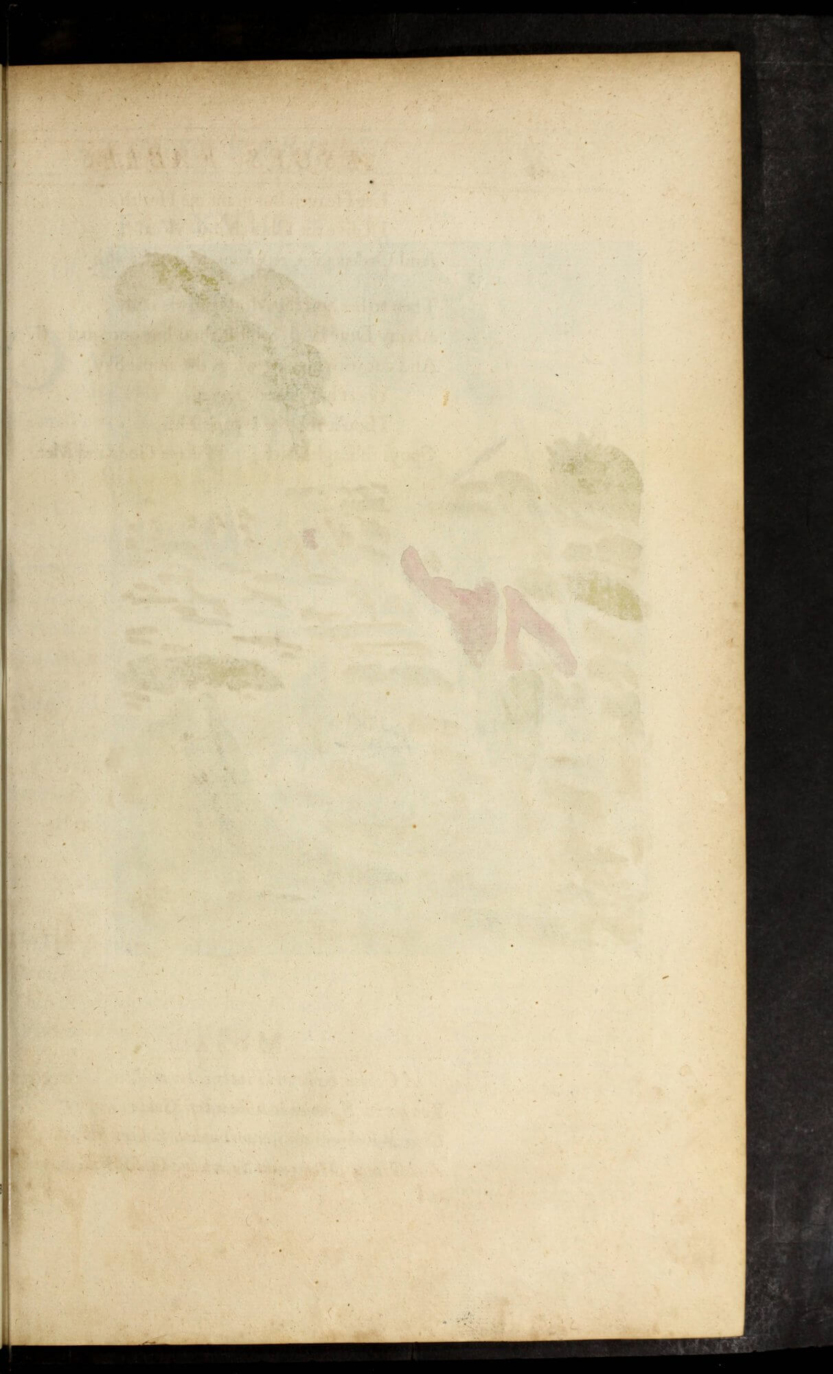 The blank verso of the leaf of a hand-colored intaglio print shows where some of the inks have bleed through.